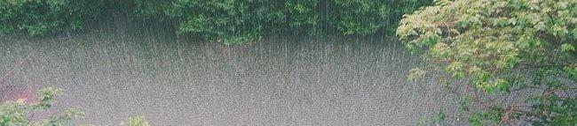 Mukjizat Hujan